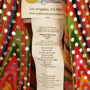 California Costumes Other - California Costumes Women's Discolicious Costume